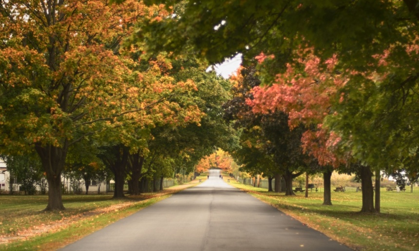 Cemeery Road. Nikon Df camera, Nikkor 50mm f/1.4 lens. Photo by Chuck Miller.