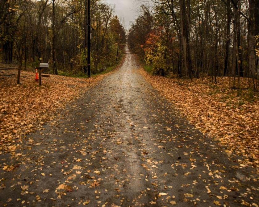 Allen Teator Road in Durham, N.Y. Nikon Df camera, Vivitar 19mm f/3.8 lens. Photo by Chuck Miller.