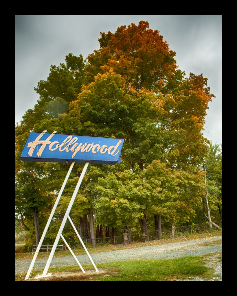 Hollywood Foliage.  Nikon Df camera, Vivitar 19mm f/3.8 lens.  Photo by Chuck Miller.