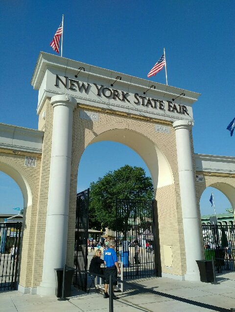 My 2017 New York State Fair results